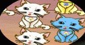 العاب سرعة تحديد القطط و مطابقة القطط جديدة