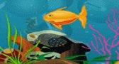 العاب فلاش نجوم السمك للاطفال جديدة 2010 Star Fish Game