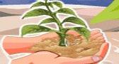 لعبة الاهتمام بالنباتات