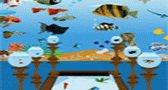 ديكور حوض السمك