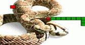 العاب سريعه لعبة الثعبان الجديدة Snake Games